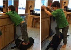 Facebook Users Outraged: Sarah Palin Shares Photos of Son Trig Stepping on Dog