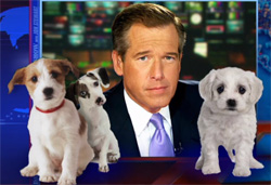 Brian Williams puppy lies