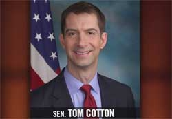 Bill Maher does Tom Cotton