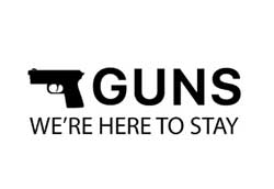 SNL: Guns for all occassions
