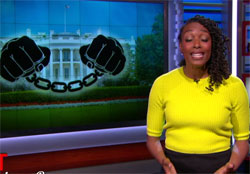 Nightly Show Franchesca Ramsey makes a fool of a well fed Bill O'Reilly
