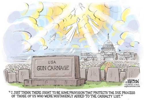 No chance for Due Process for gun victims