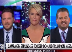 Megyn Kelly flips out when Trump surrogate says wheelchair ramps cost a lot of money