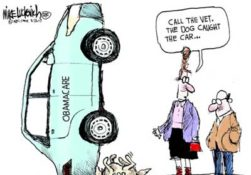 The GOP DOG catches the Obamacare care