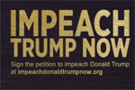 Resist: Impeach Trump Now Petition, D C Douglas