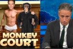 jon stewart monkey court