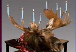 palin menorah