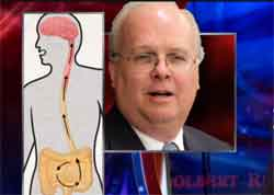 karl rove has sh*t for brains