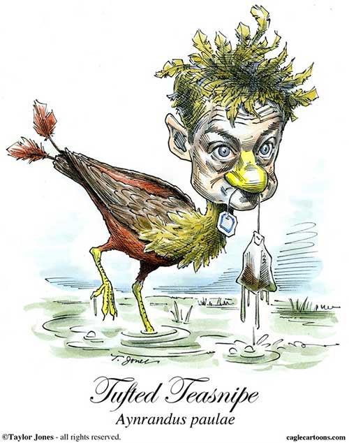 rand paul strange bird