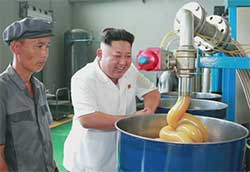 kim sung fun, north korean lube