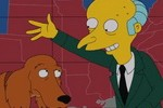 Simpson's wealthy one percenter Mr. Burns campaigns for Mitt Romney, and further mistreats Romney family pooch Shamus