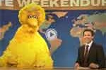 seth meyers with now homeless bigbird